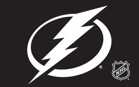 NHL Tampa Bay Lightning Cases and Skins
