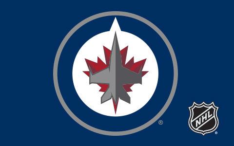 NHL Winnipeg Jets Cases and Skins