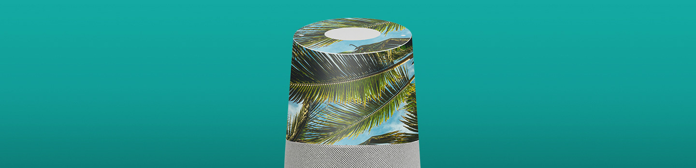 Designs Custom Google Home Skins
