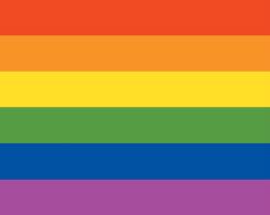 Shop Pride Cases & Skins