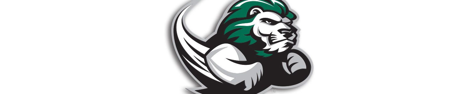 Slippery Rock University Cases and Skins