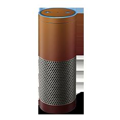 Chameleon Amazon Echo Dot Skin