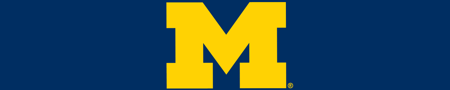 University of Michigan Cases and Skins
