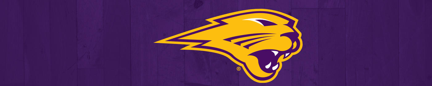 University of Northern Iowa Cases and Skins