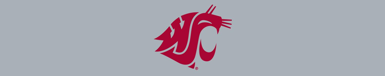 Washington State University Cases and Skins