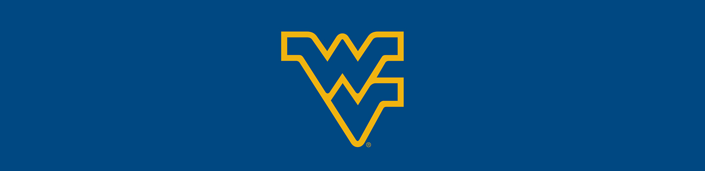 West Virginia University Cases and Skins