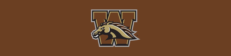 Western Michigan University Cases & Skins