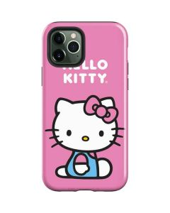Hello Kitty Sitting Pink iPhone 12 Pro Max Case