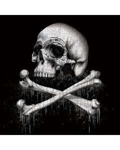 Skull and Bones Lenovo T420 Skin