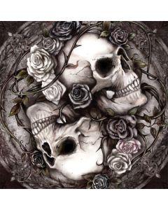 Skulls and Roses Asus X202 Skin