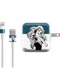 Ariel Stripes iPad Charger (10W USB) Skin