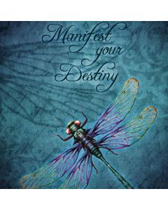 Manifest Your Destiny HP Notebook Skin