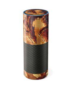 Bravery Misplaced Dragon and Knight Amazon Echo Skin
