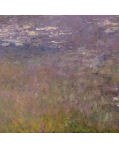 Water Lilies by Claude Monet HP Pavilion Skin