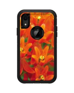Butterfly Weed of Rich Orange Color Otterbox Defender iPhone Skin