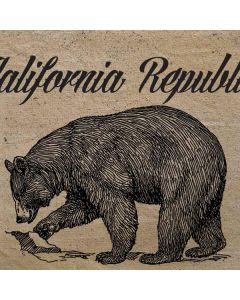 Cali Republic Vintage HP Pavilion Skin