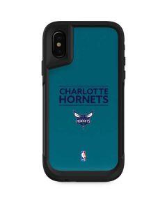 Charlotte Hornets Standard - Blue  Skin