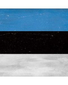 Estonia Flag Distressed Generic Laptop Skin