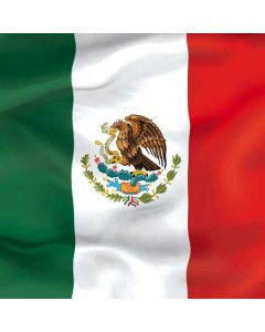 Mexico Flag PlayStation 4 Gold Wireless Headset Skin