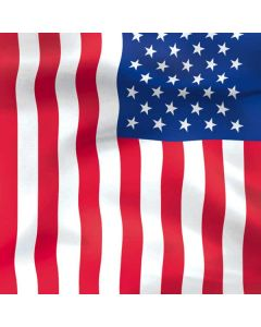 USA Flag PlayStation 4 Gold Wireless Headset Skin