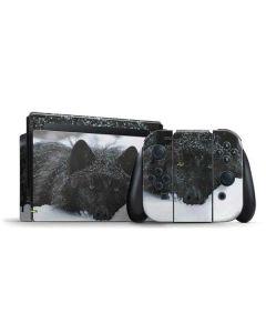 Gray Wolf Resting In Deep Snow Nintendo Switch Bundle Skin
