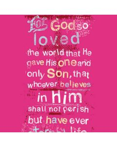 John 3:16 in Pink Motorola Droid Skin