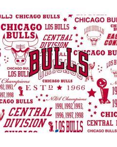 Chicago Bulls Historic Blast PS4 Controller Skin