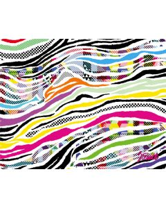 Zebra Pattern Apple TV Skin