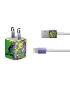 Loki iPhone Charger (5W USB) Skin