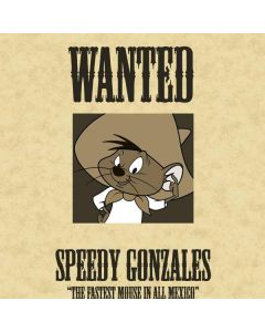 Speedy Gonzales- Andale! Andale! iPad Charger (10W USB) Skin