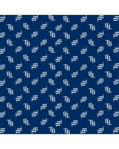 Tampa Bay Rays Full Count Dell Latitude Skin