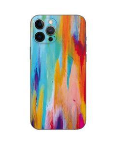 Multicolor Brush Stroke iPhone 12 Pro Skin