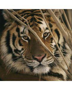 Tiger Portrait LifeProof Nuud iPhone Skin