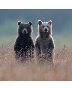 Brown Bears LifeProof Nuud iPhone Skin