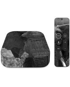 Black and White Elephant Apple TV Skin