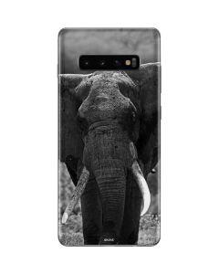 Black and White Elephant Galaxy S10 Plus Skin