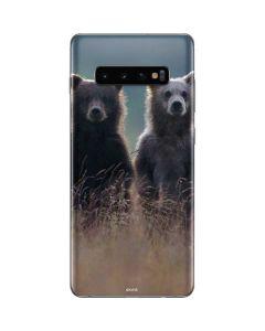 Brown Bears Galaxy S10 Plus Skin