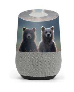 Brown Bears Google Home Skin