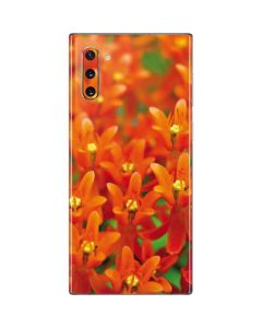 Butterfly Weed of Rich Orange Color Galaxy Note 10 Skin