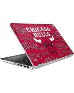 Chicago Bulls Blast HP Pavilion Skin