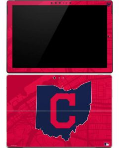 Cleveland Indians Home Turf Surface Pro (2017) Skin