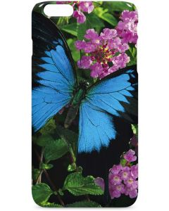 Ulysses Butterfly Lands On Pink Flowers iPhone 6/6s Plus Lite Case
