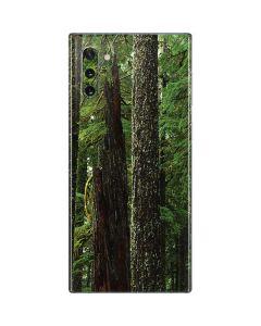 Evergreen Forest Galaxy Note 10 Skin