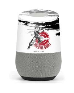 Trunks Wasteland Google Home Skin