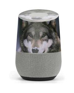 Gray Wolf at International Wolf Center Google Home Skin
