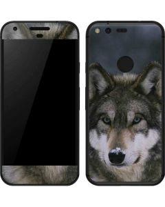Gray Wolf at International Wolf Center Google Pixel Skin