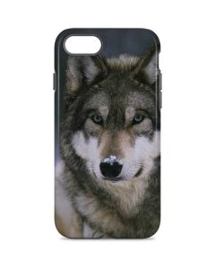 Gray Wolf at International Wolf Center iPhone 7 Pro Case