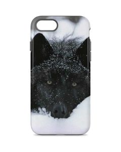 Gray Wolf Resting In Deep Snow iPhone 8 Pro Case