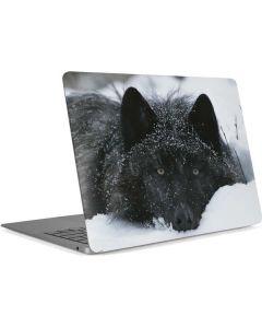 Gray Wolf Resting In Deep Snow Apple MacBook Air Skin