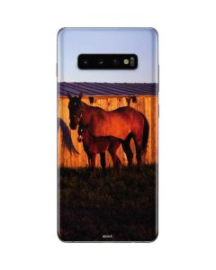 Horses at Sunset In Montana Galaxy S10 Plus Skin